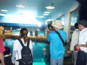北九州市立いのちのたび博物館に行ってきました